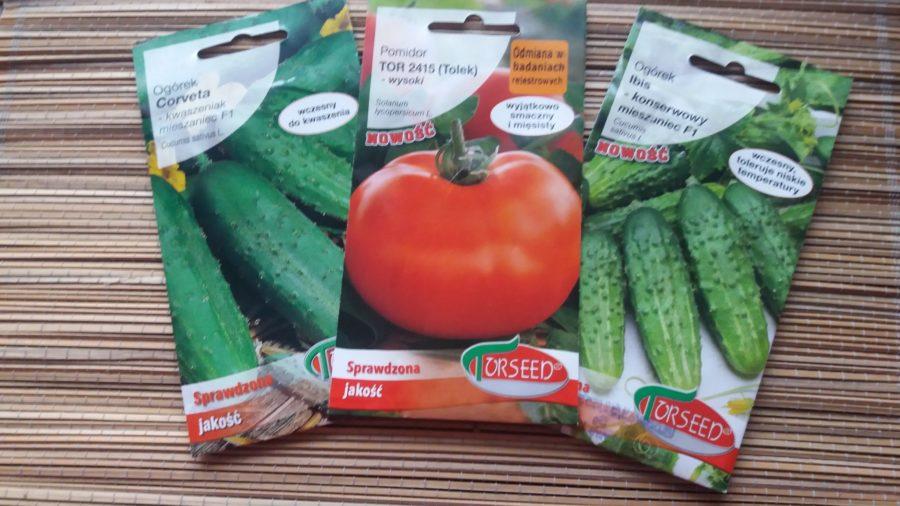 nasiona Torseed